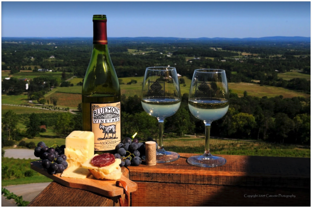 bluemont vineyard - Google Search 2018-05-16 15-32-08.png