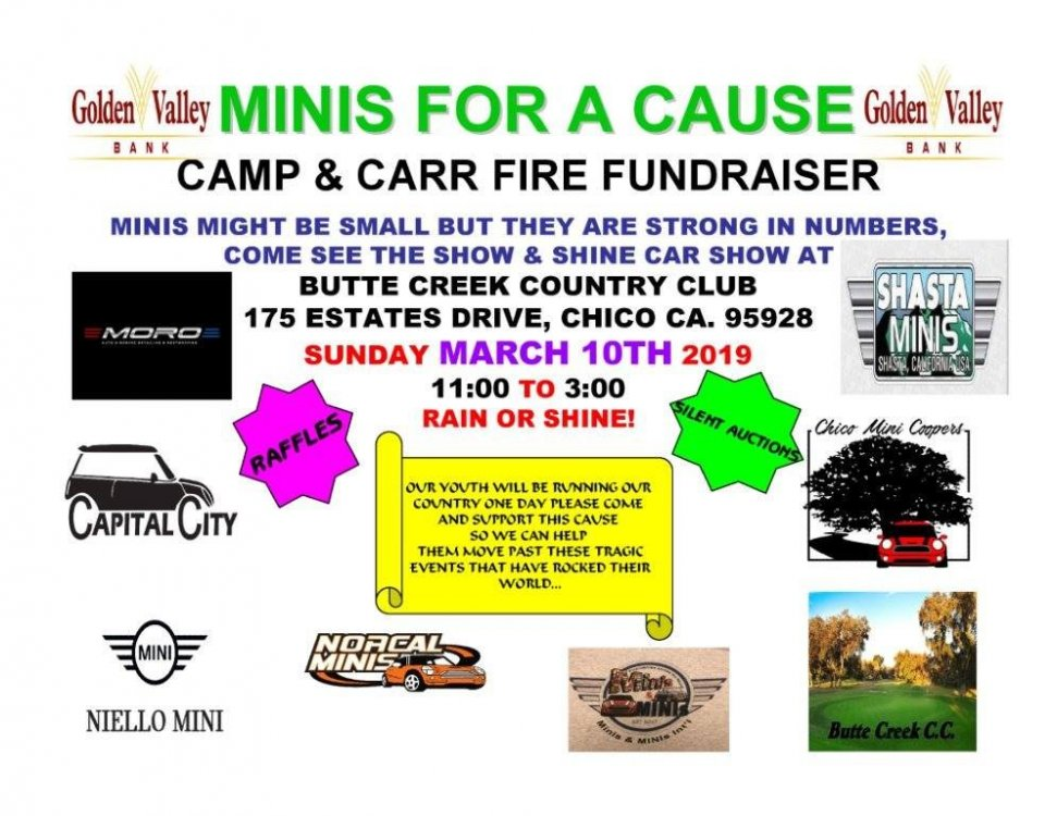 MINIs for a Cause.jpg